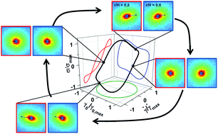 Spatiotemporal stress and structure evolution in dynamically sheared polymer-like micellar solutions