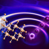 Kitaev quantum spin liquid response in RuCl3